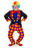 Clown in grappige houding stock foto's