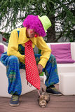 The clown and his ferret. The clown with violet rig and his ferret resting after the show stock photo