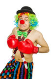 Clown med boxninghandskar Royaltyfri Bild