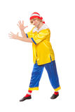Clown in a pinocchio suit Stock Photos