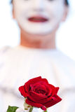 Clown with red rose Royalty Free Stock Photo