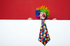 Clown with tie on blank white board Stock Images