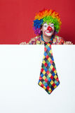 Clown with tie on blank white board Stock Photos