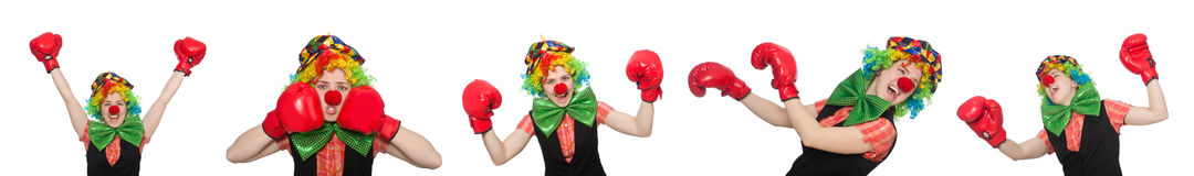 Clown in various poses isolated on white Stock Image
