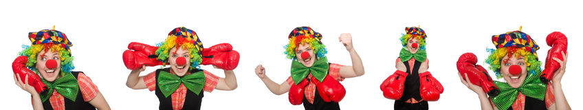 Clown in various poses isolated on white Stock Photography