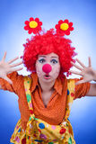 Clown woman on blue background studio shooting Stock Photography