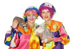 Clowne mit Kaninchen und Waschbären Stockfotografie