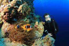 clownfish σκάφανδρο δυτών Στοκ εικόνα με δικαίωμα ελεύθερης χρήσης