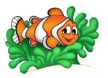 Clownfish in anemone 3. Color illustration of clownfish in anemone stock illustration