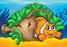 Clownfish in anemone. Color illustration of clownfish in anemone royalty free illustration