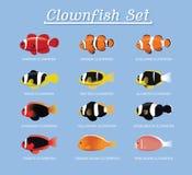Clownfish Anemonefish Set Cartoon Vector Illustration vector illustration