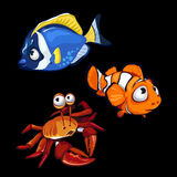 Clownfish, blue fish and crab, marine characters Stock Images