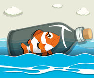 Clownfish in the bottle at sea Royalty Free Stock Image