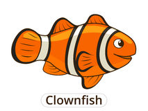 Clownfish sea fish cartoon illustration Royalty Free Stock Image