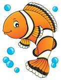 Clownfish topic image 1 Stock Photos