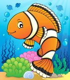 Clownfish topic image 2 Royalty Free Stock Photo