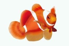 Clownfish on white background. Beautiful clownfish on white background Royalty Free Stock Photos