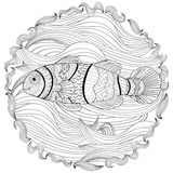 Clownfish z wysokimi szczegółami Obraz Stock