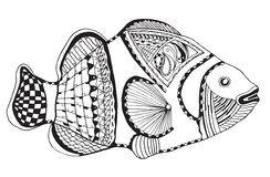 Clownfish zentangle stylized, vector, illustration, freehand pen Stock Photo