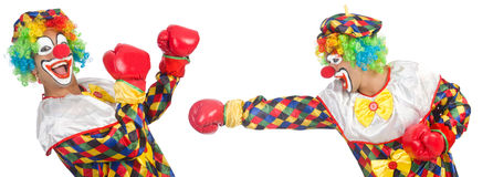 Clowns with boxing gloves isolated on white Royalty Free Stock Photos