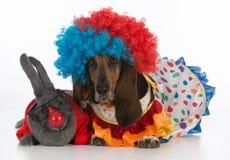 Clowns idiots Images libres de droits