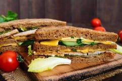 Club-bocadillo delicioso con el pan de centeno, pollo, queso, pepinos, verdes Imágenes de archivo libres de regalías