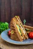 Club-bocadillo delicioso con el pan de centeno, pollo, queso, pepinos, verdes Imagenes de archivo