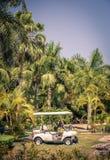 Club cart among palm trees Stock Image