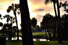 Club de golf de Bradenton Images libres de droits