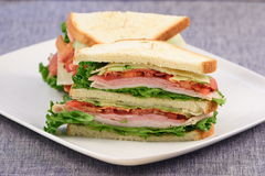 Club healthy sandwich. Delicious fresh sandwich made with fine meats and organic ingredients Royalty Free Stock Photography