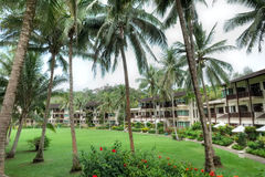 Club Med, Bintan, Indonesia. The gorgeous forest at Club Med Bintan stock photo