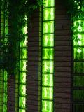 Club nocturno de la pared y de las ventanas con las vides Fotografía de archivo libre de regalías