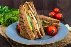 Club-panino delizioso con il pane di segale, pollo, formaggio, cetrioli, verdi Fotografia Stock