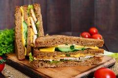 Club-panino delizioso con il pane di segale, pollo, formaggio, cetrioli, verdi Immagini Stock