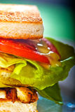 Club sandwich. Fresh and delicious classic club sandwich over a transparent glass dish stock image