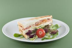 Club Sandwich. Sandwich with salmon, bacon, turkey, pepper and sallad Royalty Free Stock Photo