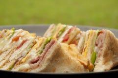 Club sandwich Royalty Free Stock Photos