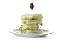 Club sandwich. Against white background stock photography
