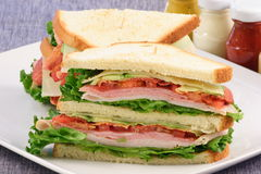 Club sandwich. Delicious fresh sandwich made with fine meats and organic vegetables Royalty Free Stock Images