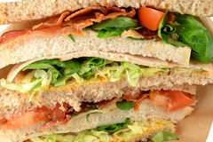 Club sandwich bacon. Stock Image