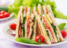 Club sandwich with chicken breast, bacon, tomato, cucumber Royalty Free Stock Image