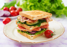 Club sandwich with chicken breast, bacon, tomato, cucumber Royalty Free Stock Photography