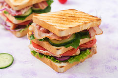 Club sandwich with chicken breast, bacon, tomato, cucumber Stock Images