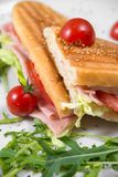 Club sandwich, close up shot royalty free stock images