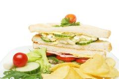 Club sandwich closeup Stock Images