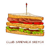 Club sandwich colored sketch. VECTOR sketch. Brown contour lines. Isolated on white Stock Images