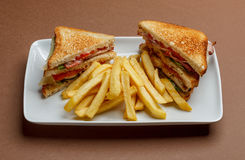 Club sandwich. Delicious club sandwich with french fries royalty free stock image