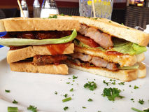 Club sandwich. Fabolous club sandwich for a big break Royalty Free Stock Photography