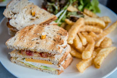 Club sandwich and french fries Royalty Free Stock Photo
