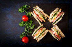 Club sandwich with ham, bacon, tomato, cucumber, cheese, eggs and herbs on dark background. Royalty Free Stock Images